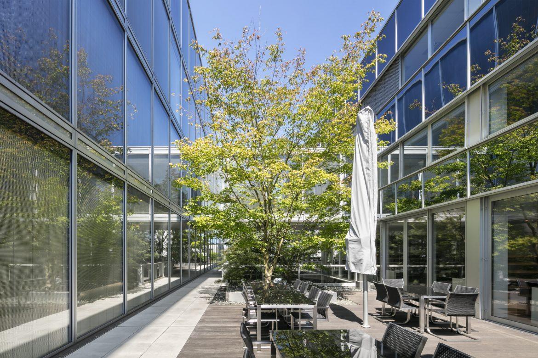 Innenhof mit Baum